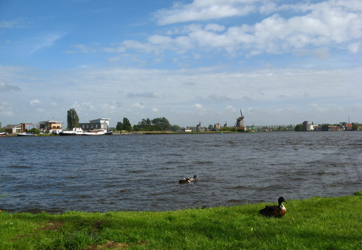 IMG 4282 - View on the Zaan